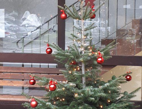 Weihnachten im Haus Wittelsbach